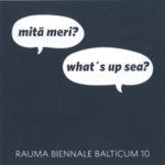 Kuva: Rauma Biennale Balticum 2010, julkaisu