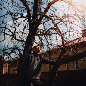 Johan Pitkänen: Ihminen ja puu